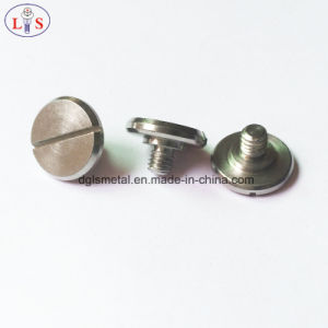 Stainless Steel Slotted Step Screw with High Quality pictures & photos
