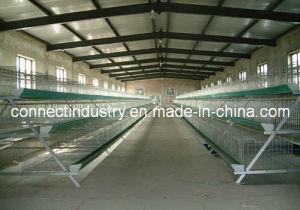 Poultry Farm Machinery