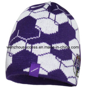 Knitted Beanie Hat (SS12-CK012) pictures & photos