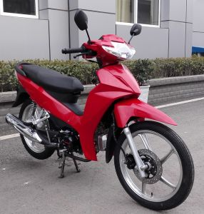 China Motorcycle 100cc, 110cc, 120cc YAMAHA Type pictures & photos