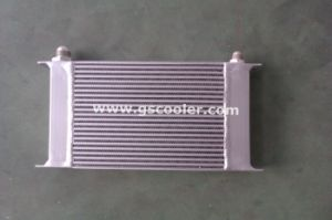 Small Size Auto Radiator for Car (H1008) pictures & photos