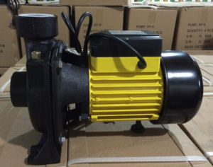 Electric Hf-6b Centrifugal Pump 1.5kw/2HP Brass Impeller pictures & photos
