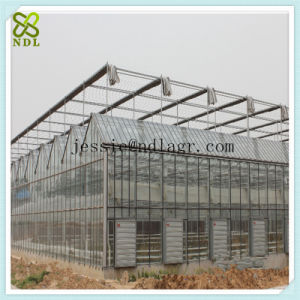 Galvanized Steel Structure Glass Cover Green House pictures & photos