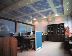 Metal Ceiling: Plain Combined Aluminum Ceiling Series-Blue Sky Ceiling pictures & photos