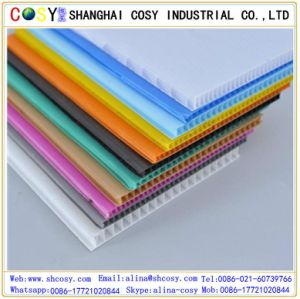 Customized Lightweight Plastic Board / Advertising PP Corflute Sheet pictures & photos