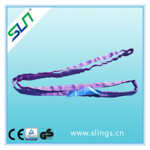 1tx1m Safety Factor 5: 1 100% Polyester Endless Round Sling pictures & photos