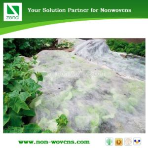 Potato Nonwovens Ground Cover pictures & photos