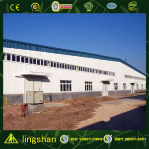 Prefab Modern Automated Factory (L-S-C079) pictures & photos