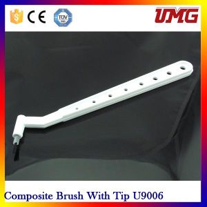 Composite Brush with Tip/ Dental Disposable Material pictures & photos