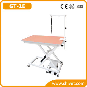 Electric Grooming Table (GT-1E) pictures & photos