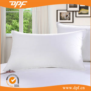 Polyester Cushion Insert (DPF061144) pictures & photos