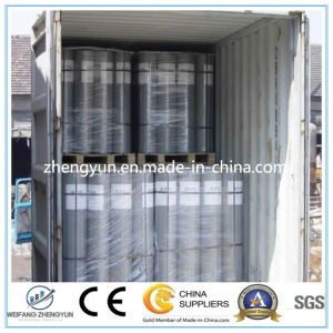 High Quality 1 Inch 2X2 Galvanized & Welded Wire Mesh pictures & photos