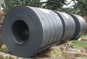 Steel Coil Galvanized Steel Coil From Sara pictures & photos