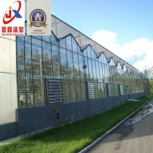 Glass Greenhouse with Hot-DIP Galvanized Steel Structure for Flower Growing pictures & photos