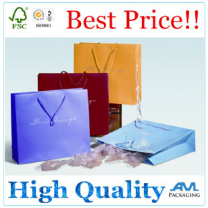Custom Printed Retail Paper Bag Luxury Shopping Bag pictures & photos