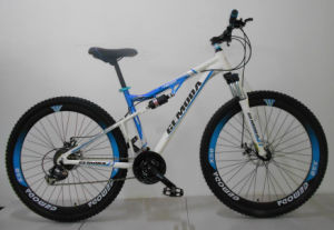 29inch Alloy Full Suspension 24 Speed MTB Bicycle/Bike/Cycle pictures & photos