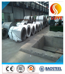 Stainless Steel Cold Rolled Coil/Strip Compective Price 316 316L pictures & photos