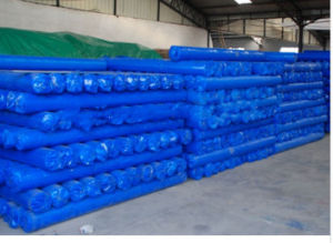 Blue PE Tarps Roll pictures & photos