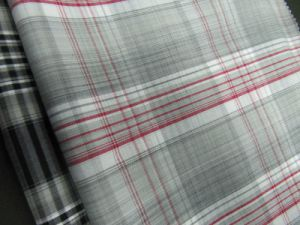 Cotton Yarn Dyed Check Poplin for Shirts pictures & photos
