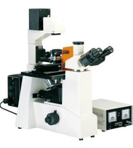 Inverted Fluorescence Microscope (MF51)