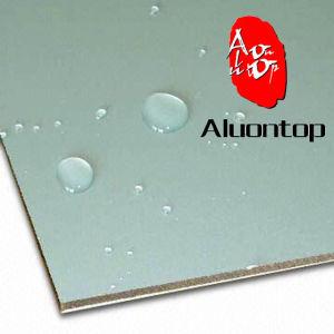 Aluminum Composite Panel (ACP) pictures & photos