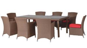 Rattan Furniture Set (HZD-R006)