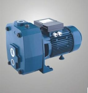 Self-Priming Jet Pump (DP505/750)