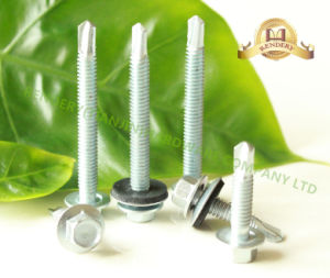 Roofing Screw Hex Washer Head Chinese Factory pictures & photos