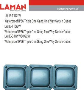 LWIE-T1G1W/2W S1g1wd1g1w/2W IP66 Waterproof Triple Gang 1W/2W Switch Outlet