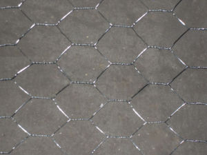 Hexagonal Wire Netting Also Called Chicken Wire Mesh pictures & photos
