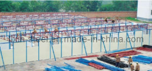 Low Cost Modular Building as Interim Hospital and Shelter pictures & photos
