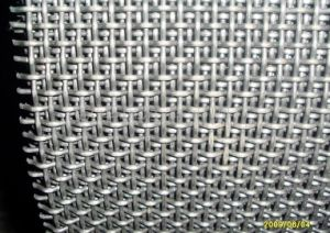 Crimped Wire Mesh/Telas Onduladas in 25mm to 100mm Opening pictures & photos