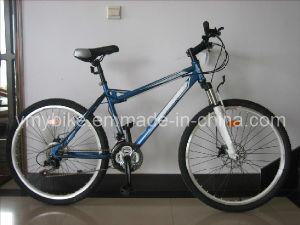 MTB Bike (AD-M113)
