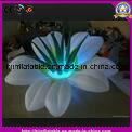 2016 Amazing Inflatable Flower Decoration for Event Sale pictures & photos