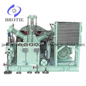 Brotie Totally Oil-Free CO2 Gas Compressor pictures & photos