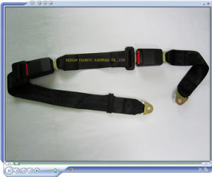 Hot Selling Extended Safety Seat Belt