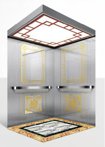 Elegant and Good Design Passenger Elevator, Resident Elevator