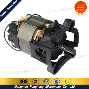 Genesis Mixer Motor Electric AC Motor pictures & photos