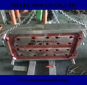 Plastic Injection Back Plate Baffle Mould pictures & photos
