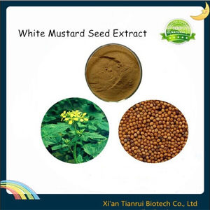 White Mustard Seed Extract, Mustard Seed Extract pictures & photos