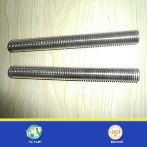 Medium Carbon Steel Ground Screw pictures & photos