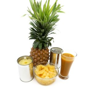 Canned Pineapple pictures & photos