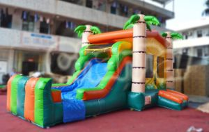Palm Tree House Inflatable Bouncer Combo (chb527) pictures & photos