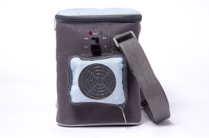 Portable Electronic Mini Cooler 6liter, DC12V with Cooling and Warming for Outdoor Application pictures & photos