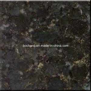 China Butterfly Green Graniter Tile pictures & photos