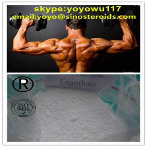 Safe Anabolic Steroid Testosterone Enanthate for Body Building pictures & photos