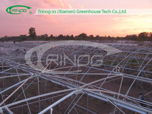 Multi-Span Film Agricultural Economic Greenhouse pictures & photos