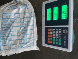 Chinese Factory Squid Price (Illex Squid) pictures & photos