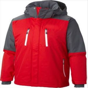 2015 Mens Windproof Waterproof Outdoor Padded Winter Ski Jacket pictures & photos