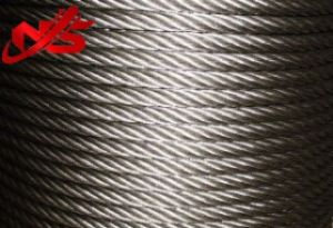 Galvanized Wire Steel Wire Rope 1X19 pictures & photos